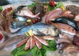 pesce mercato ittico