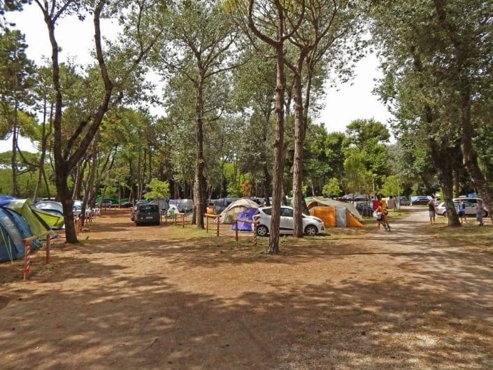 pineta camping